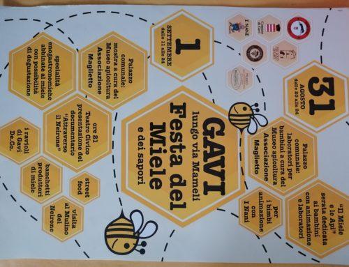Festa del Miele a Gavi